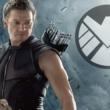 hawkeye shield
